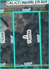 10416 Calico Warbler Avenue