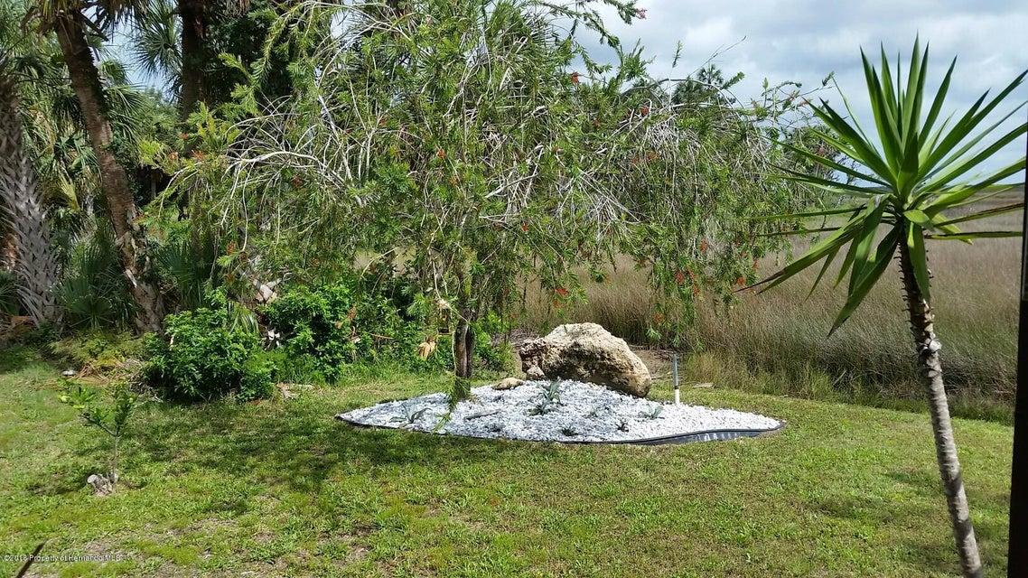 3619 Eagle Nest Drive