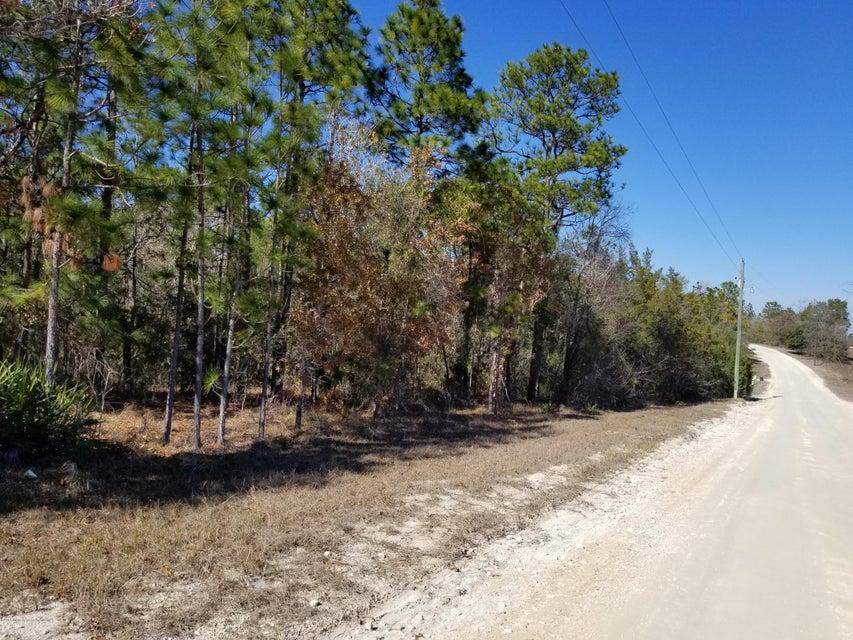 14111 Dusky Warbler Road