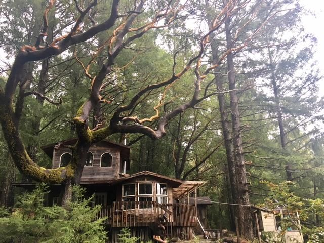 2100 Goodman Ranch Road, Garberville, CA 95542
