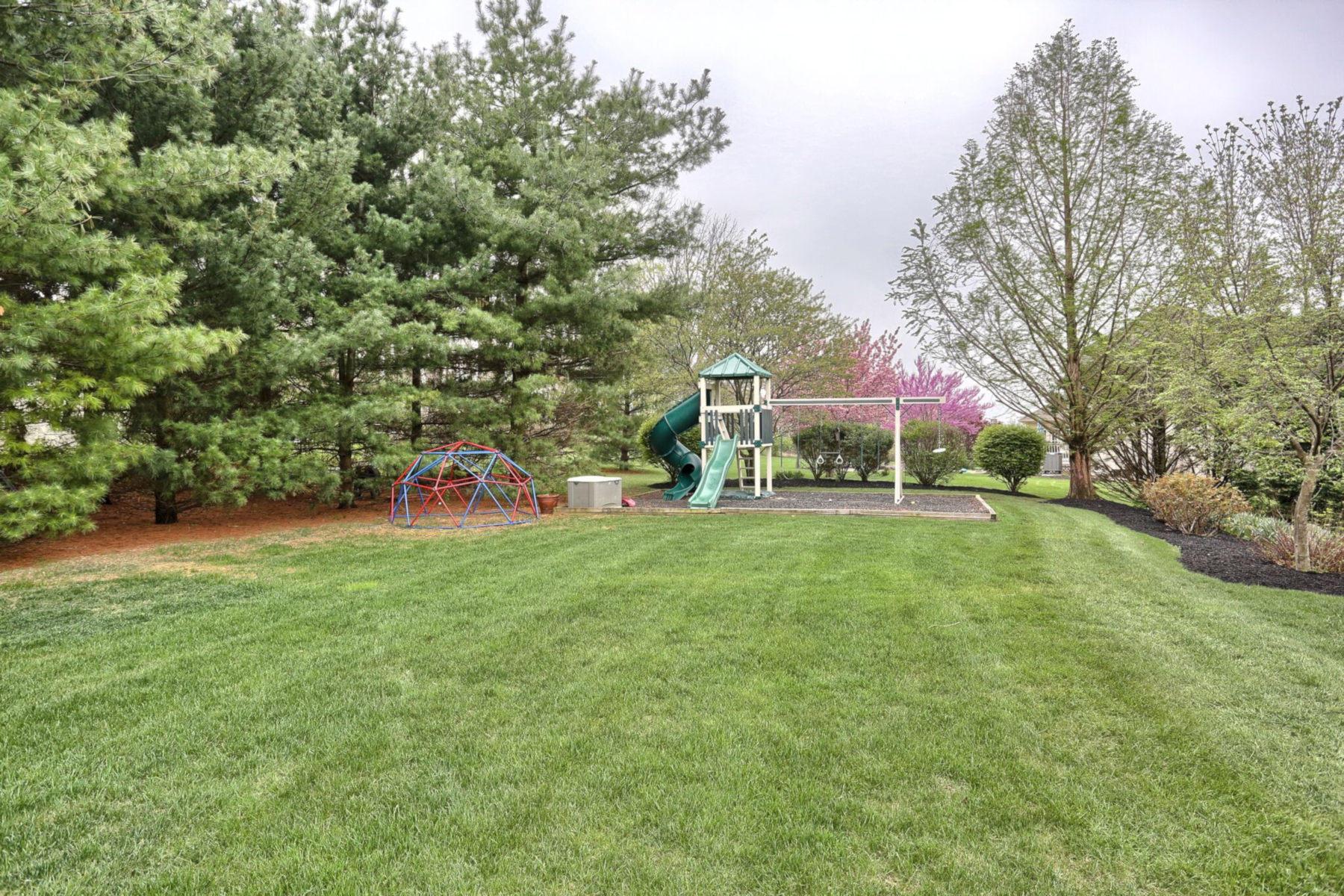 Rear Yard View 2