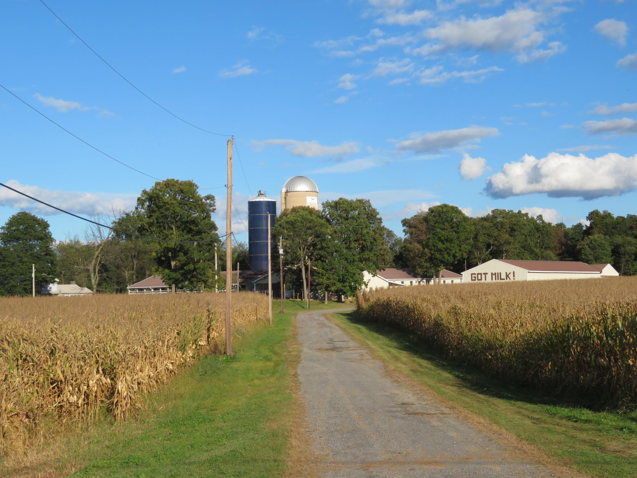 独户住宅 为 销售 在 436 MCKINNEY ROAD 436 MCKINNEY ROAD Lock Haven, 宾夕法尼亚州 17745 美国