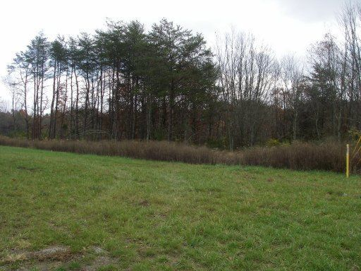 Additional photo for property listing at Miller Avenue Miller Avenue Crossville, Tennessee 38555 Estados Unidos
