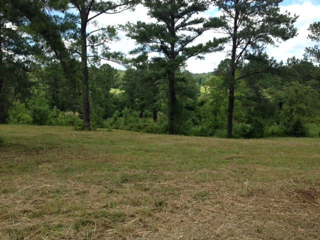 Additional photo for property listing at Grand Creek Point Grand Creek Point 马里维尔, 田纳西州 37801 美国