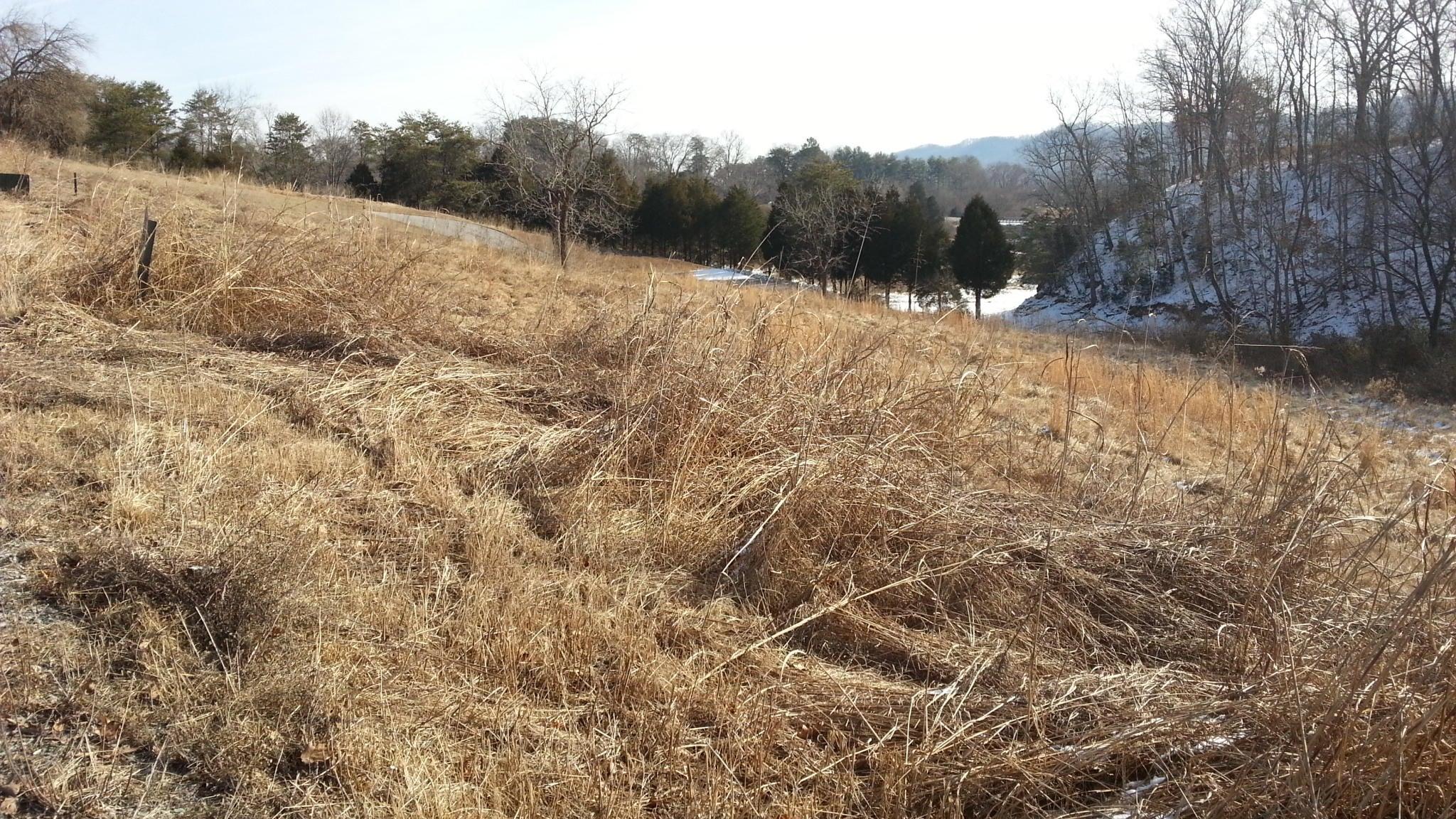 Additional photo for property listing at Lot 65 Whispering Court Lot 65 Whispering Court Bean Station, Теннесси 37708 Соединенные Штаты