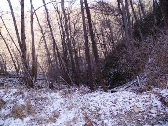 Additional photo for property listing at Balsam Slopes Road Balsam Slopes Road Sevierville, Теннесси 37862 Соединенные Штаты