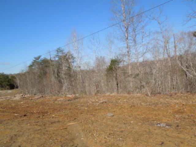Terrain pour l Vente à 10.03 Thunder Bay Trail 10.03 Thunder Bay Trail Burkesville, Kentucky 42717 États-Unis