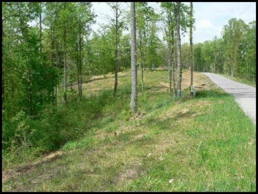 Land for Sale at Highland Woods Way Highland Woods Way Powell, Tennessee 37849 United States