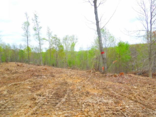 Land for Sale at 15.86 Ac Pleasant Hill Cemetery Road 15.86 Ac Pleasant Hill Cemetery Road Gainesboro, Tennessee 38562 United States