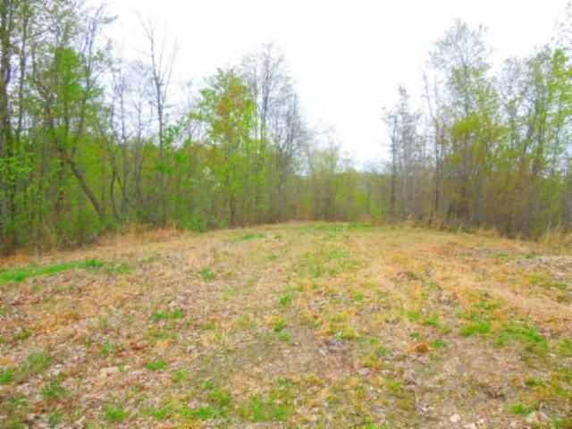 Land for Sale at 15.63 Ac Pleasant Hill Cemetery Road 15.63 Ac Pleasant Hill Cemetery Road Gainesboro, Tennessee 38562 United States