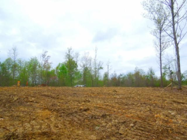 Land for Sale at 31.49 Ac Pleasant Hill Cemetery Road 31.49 Ac Pleasant Hill Cemetery Road Gainesboro, Tennessee 38562 United States