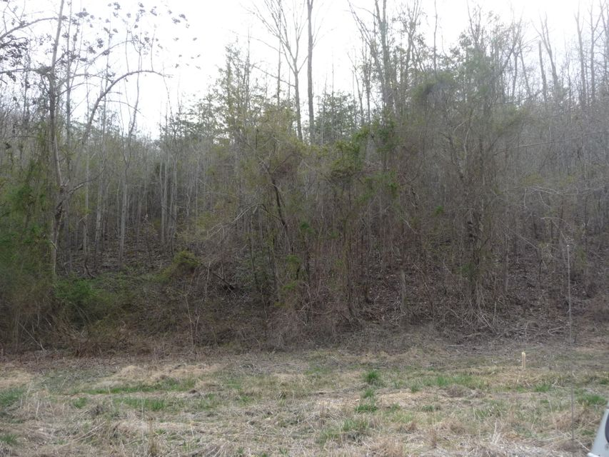 Additional photo for property listing at Winton Chapel Road Winton Chapel Road Rockwood, Tennessee 37854 États-Unis