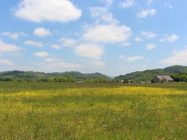 Land for Sale at Bank Street Bank Street Tellico Plains, Tennessee 37385 United States