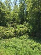 Terrain pour l Vente à Winton Chapel Road Winton Chapel Road Rockwood, Tennessee 37854 États-Unis