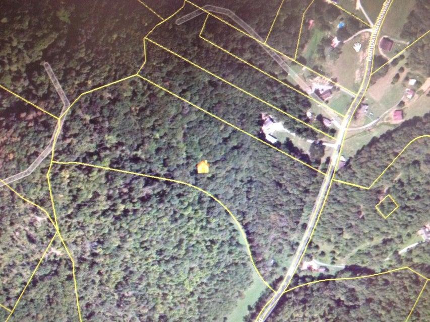 土地 为 销售 在 Pumpkin Hollow Road Heiskell, 田纳西州 37754 美国