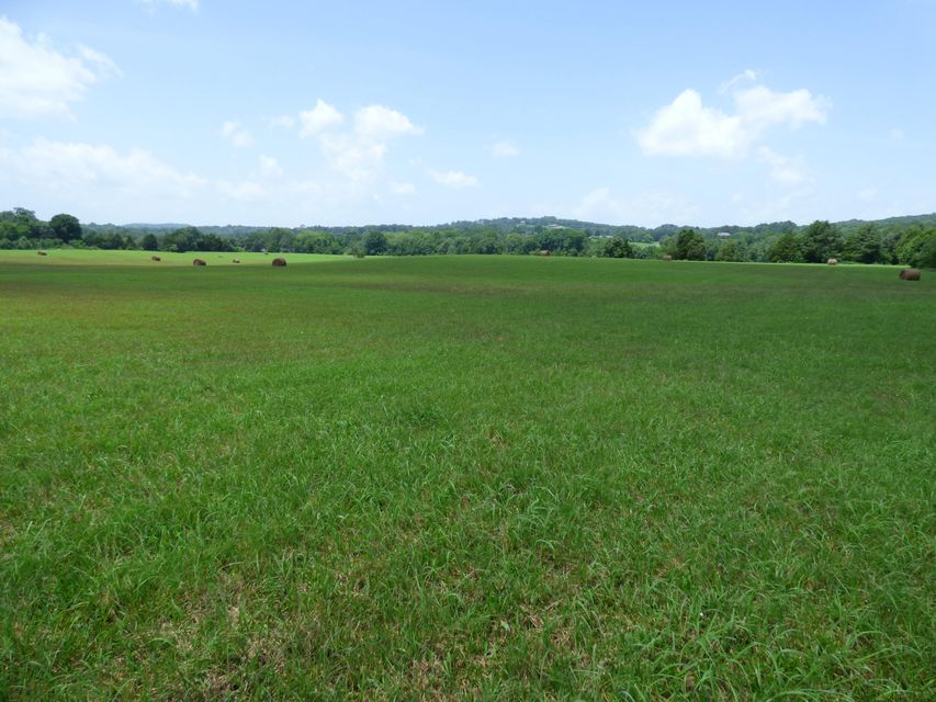 Land for Sale at 7711 Thompson School Road 7711 Thompson School Road Corryton, Tennessee 37721 United States