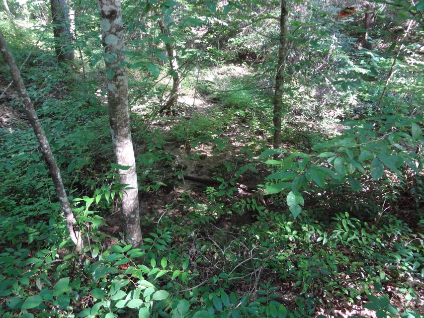 Land for Sale at Happy Valley Road Tallassee, Tennessee 37878 United States