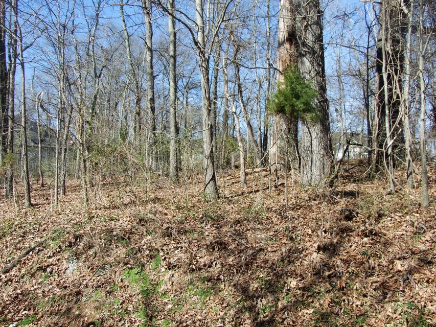 Additional photo for property listing at 240 Ootsima Way 240 Ootsima Way Loudon, Tennessee 37774 United States