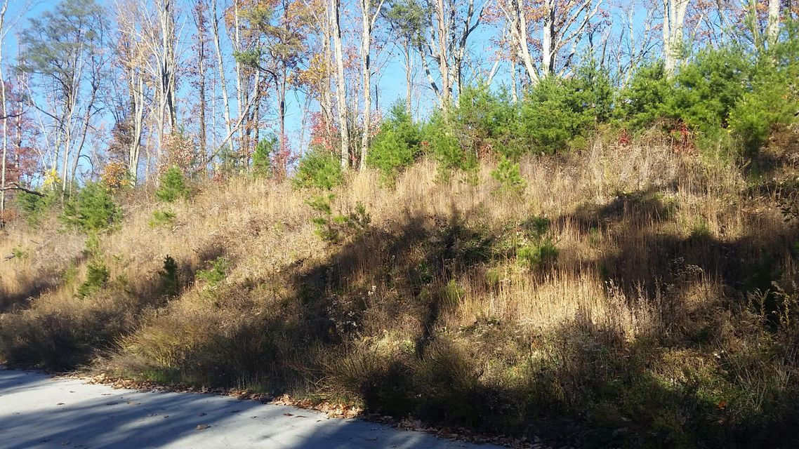 Additional photo for property listing at Lot 34 Bayside Blvd Lot 34 Bayside Blvd Bean Station, Tennessee 37708 Estados Unidos