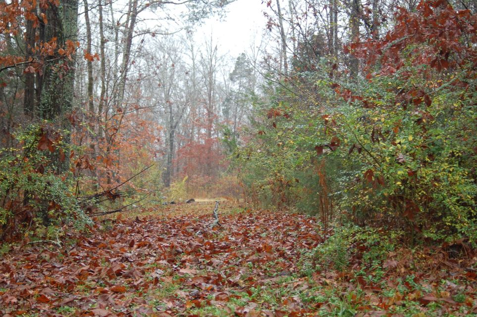 Additional photo for property listing at 7727 Neubert Springs Road 7727 Neubert Springs Road Knoxville, Tennessee 37920 Estados Unidos