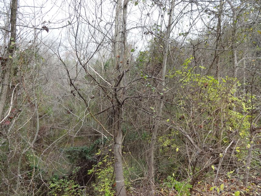 Additional photo for property listing at Channel Oaks Drive 21R Channel Oaks Drive 21R Louisville, Tennessee 37777 United States