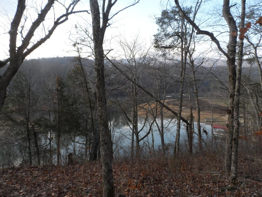 Additional photo for property listing at Lot 3 Bluff Trace  Jacksboro, Tennessee 37757 United States