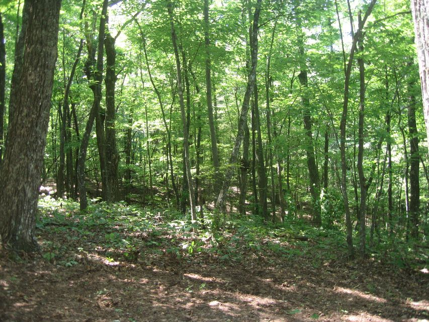 Additional photo for property listing at Laurel Way  Monterey, Tennessee 38574 États-Unis