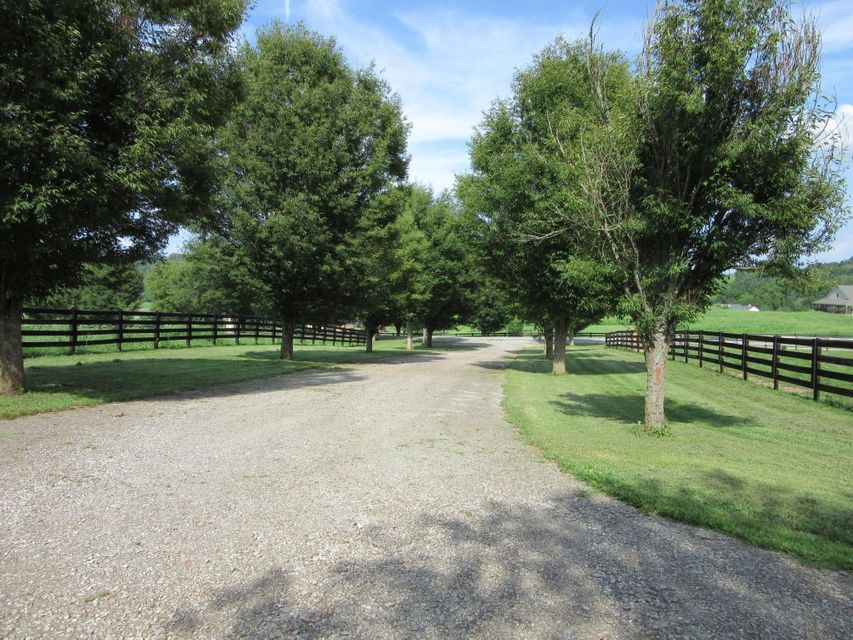 Additional photo for property listing at 531 Richland Road  Blaine, Tennessee 37709 United States
