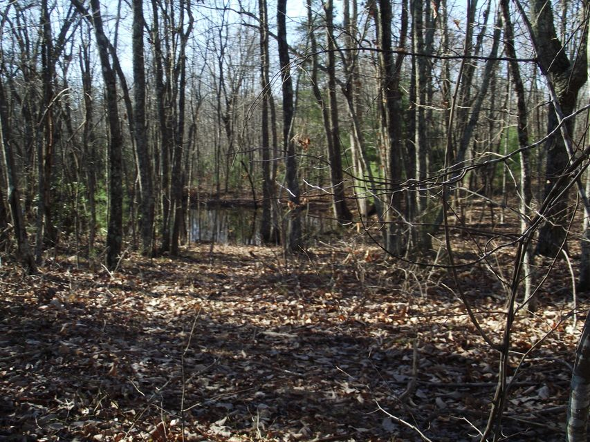 Additional photo for property listing at 8 Hemlock Trail  Graysville, Tennessee 37338 Estados Unidos