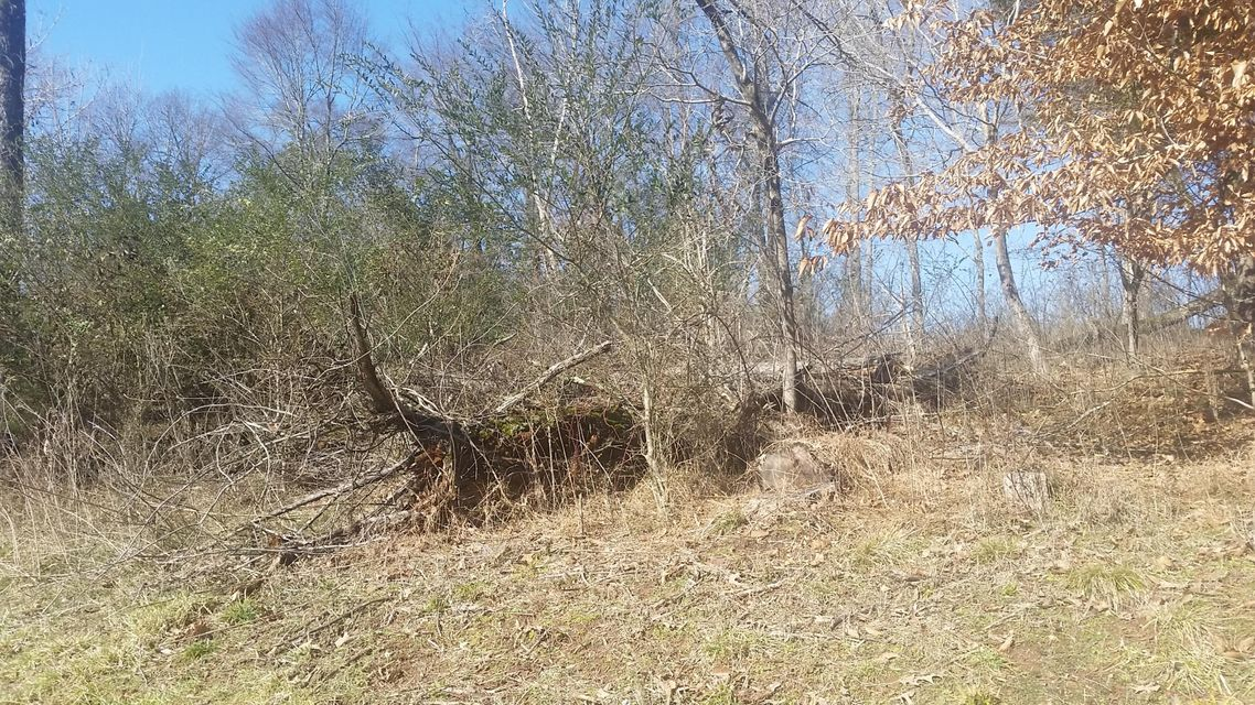 Additional photo for property listing at 1920 E Chelaque Way 1920 E Chelaque Way Mooresburg, Tennessee 37811 Estados Unidos