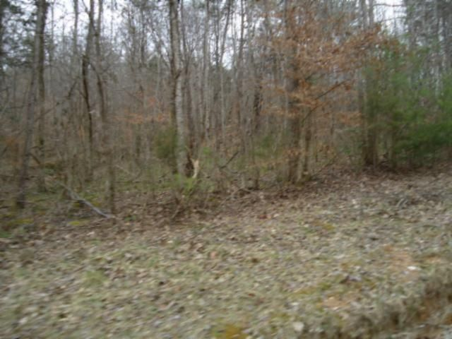 Additional photo for property listing at 218 Ac. Old Stevens Road 218 Ac. Old Stevens Road Jamestown, Tennessee 38556 États-Unis