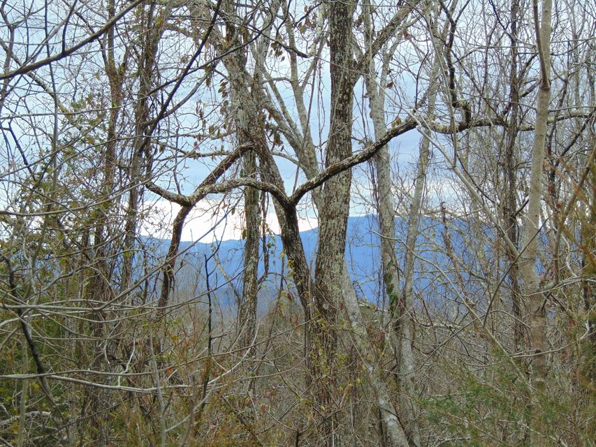 Additional photo for property listing at 2115 Megan Ridge Drive 2115 Megan Ridge Drive Sevierville, Tennessee 37876 United States