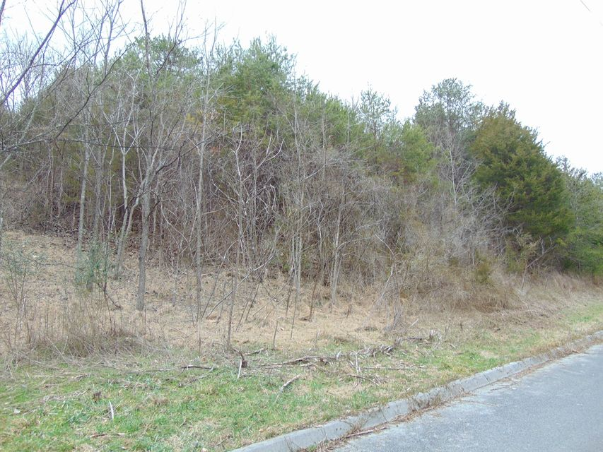Additional photo for property listing at 2115 Megan Ridge Drive  Sevierville, Теннесси 37876 Соединенные Штаты
