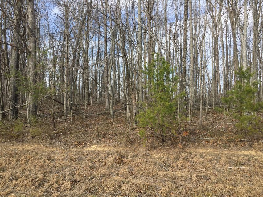 Additional photo for property listing at 5.8 Acres Street Pl Loop  Monterey, Tennessee 38574 États-Unis