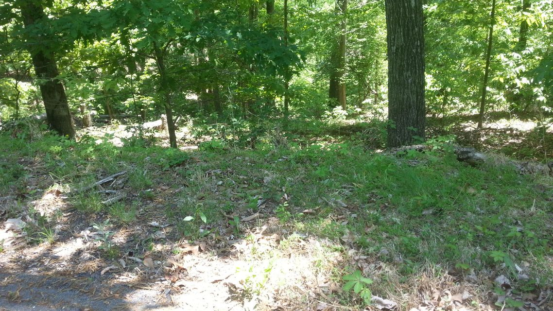 Additional photo for property listing at 710 Ea Muskogee Drive 710 Ea Muskogee Drive Mooresburg, 田纳西州 37811 美国