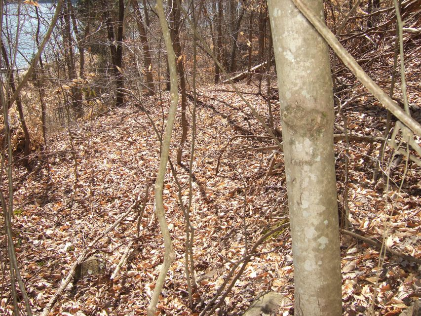 Additional photo for property listing at Lot 231 Lakeview Drive  Sharps Chapel, Tennessee 37866 United States