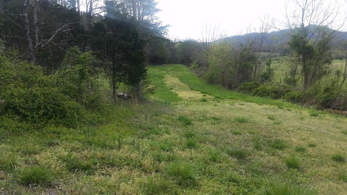 Terrain pour l Vente à 9233 Asheville Hwy Greeneville, Tennessee 37743 États-Unis