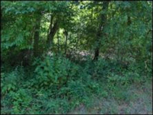 Additional photo for property listing at Mahoney Road  Oliver Springs, Tennessee 37840 États-Unis
