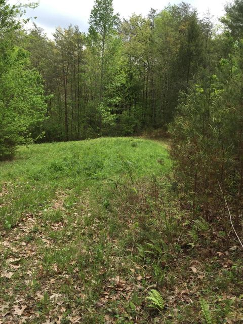 Additional photo for property listing at Address Not Available  Tellico Plains, Теннесси 37385 Соединенные Штаты