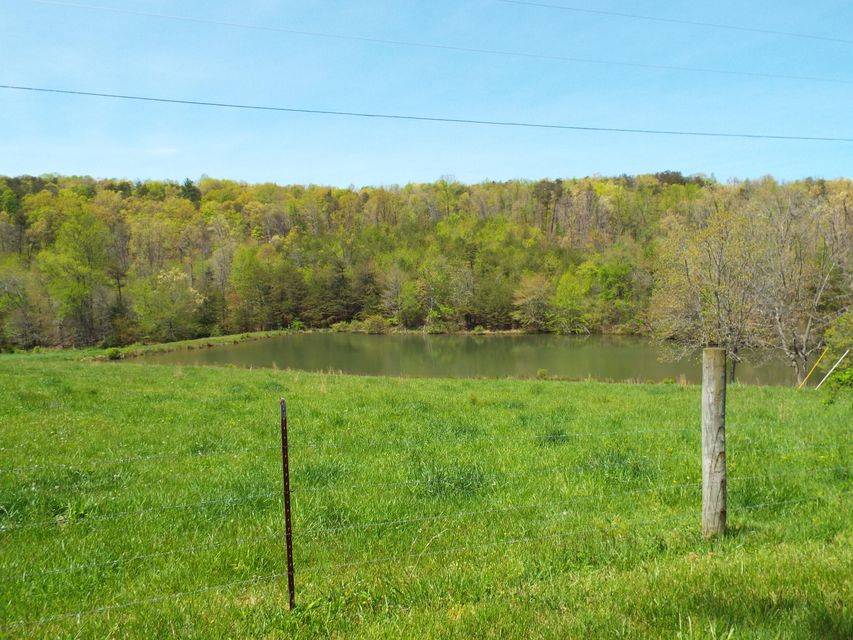 Additional photo for property listing at 779 Otis Davis Road  Pikeville, Tennessee 37367 Estados Unidos
