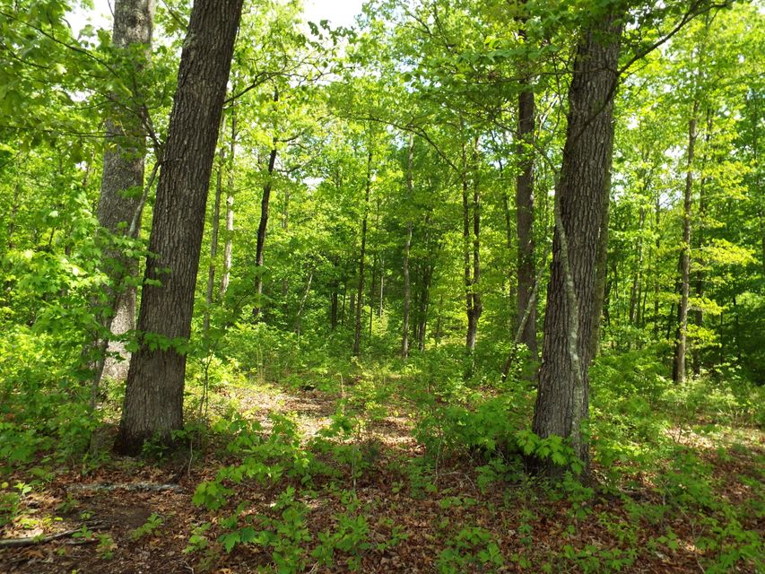 Additional photo for property listing at S Of Cherokee Tr/Hidden Trails Road  Wartburg, Tennessee 37887 United States