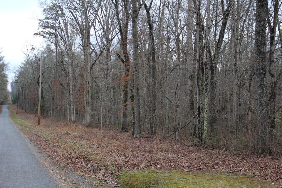 Additional photo for property listing at Doc Loy Road  Grandview, Tennessee 37337 Estados Unidos