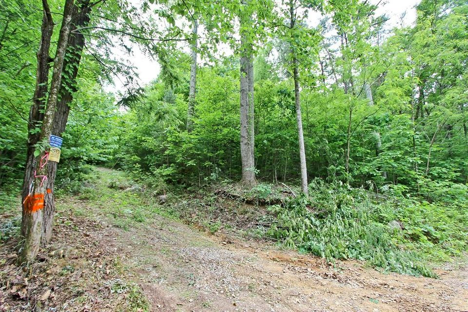 Terreno por un Venta en 22.08 Ac Neddy Mountain Road Del Rio, Tennessee 37727 Estados Unidos