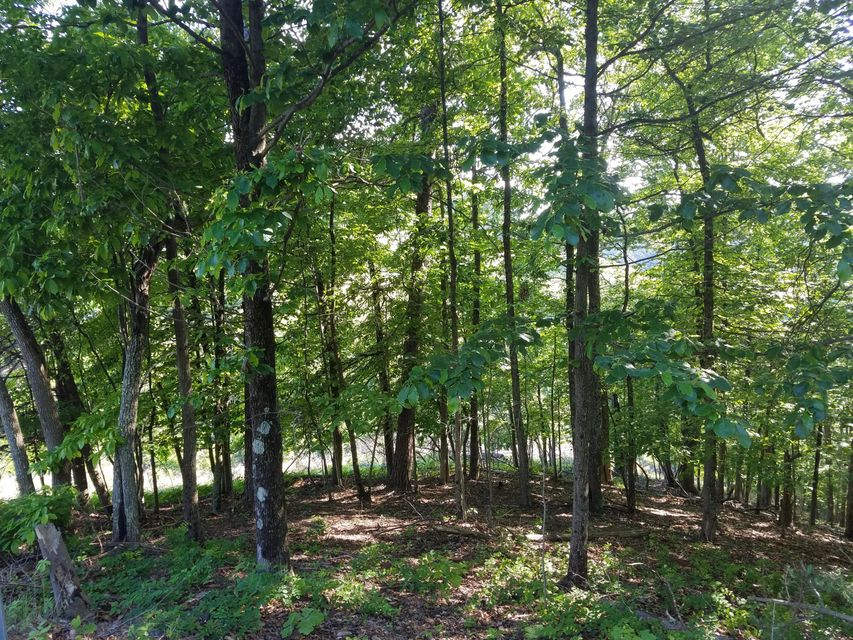 Additional photo for property listing at 1132 Keetoowah Drive 1132 Keetoowah Drive Mooresburg, Tennessee 37811 États-Unis