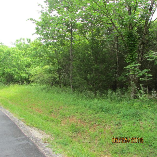 Additional photo for property listing at 119 Dudala Way  Loudon, Tennessee 37774 Estados Unidos