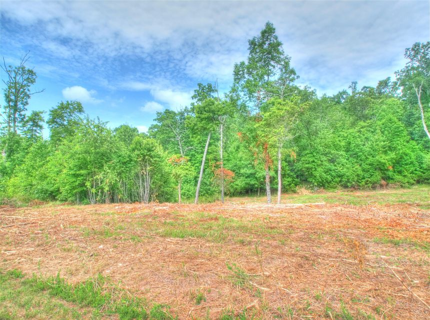 Additional photo for property listing at Water View Lot 361 Drive  Rockwood, Tennessee 37854 Estados Unidos