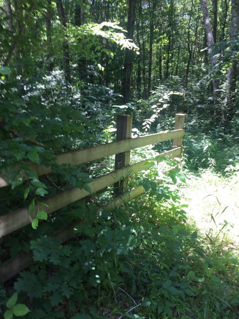 Land for Sale at 15.77 County Road 36 Calhoun, Tennessee 37309 United States