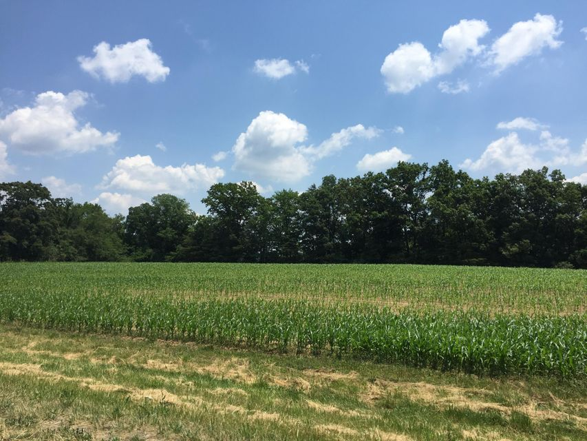 Land for Sale at S South York Hwy Hwy Grimsley, Tennessee 38565 United States