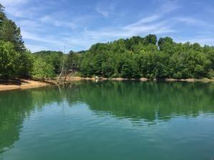Additional photo for property listing at Lot 16 Saddleridge Drive  Speedwell, 田纳西州 37870 美国