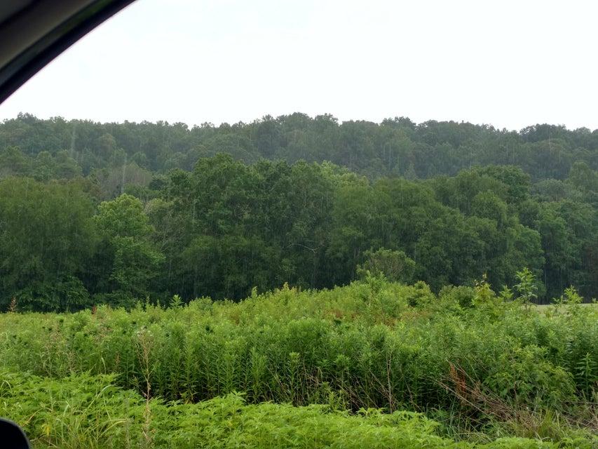 土地,用地 为 销售 在 100 Ridgeview Drive 100 Ridgeview Drive 勒诺城, 田纳西州 37771 美国